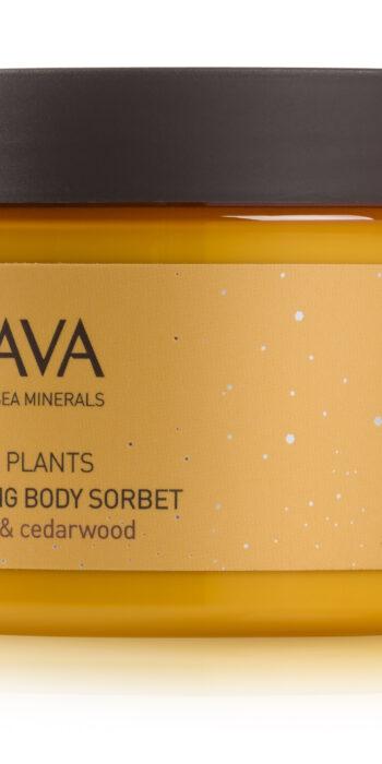 Caressing body sorbet - mandarin & cedarwood